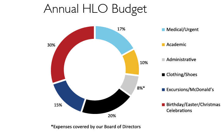 hlo budget pie chart final-01
